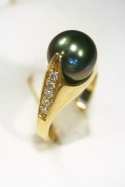 Steven Kolodny Designs